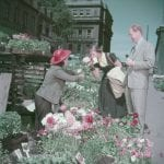 Tourists smelling flowers in Bonsecours Market, Montreal (1950)